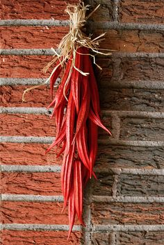 Fall Decor - Dried Okra Ristra