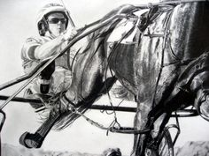 Somebeachsomewhere drawing - harness racing champion...dad loved that horse