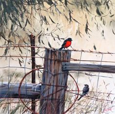 C'mon Baby Light My Fire (Flame Robins) | Helen Cottle