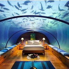 Sweet dreams  Porque não só de cor rosa são os sonhos desejo-vos Sonhos felizes e azuis @ Conrad Maldives Rangali Island  http://ift.tt/1GvvvbN  #dreamhotels  #maldivas #luxuryhotels  #luxurytravel  #travel  #traveller  #viajar  #viagens  #igtravel #wanderlust #instatravel #traveljournalist  #boho #lifestyle #carasviagens #lifestyleblogger #carasblogsportugal #travelblogger #carasblogs #turistaAcidental  #boutiquehotels #travellertribes by turistacidental