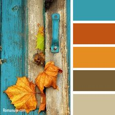 turquoise and fall Orange Color Palettes, Colour Pallette, Colour Schemes, Color Trends, Color Patterns, Color Combos, Design Seeds, Color Balance, Colour Board