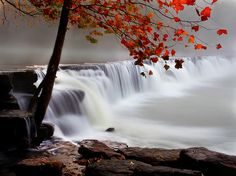 foggy falls ~ Natural Dam, Arkansas - I have been swimming there many times.