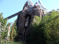 Expedition Everest, Disney's Animal Kingdom, Florida, one of the most elaborately themed (and expensive) coasters in the world