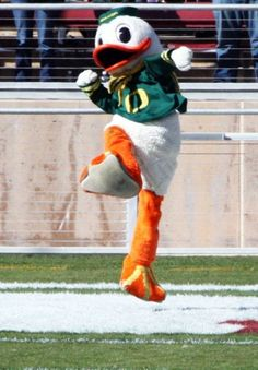 Go Ducks! I LOVE my Puddles...
