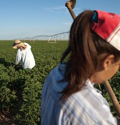 """Human Rights Watch  }  """"A 15-year-old girl hoes cotton in Texas. Unauthorized migrant farmworker women and girls are exceptionally vulnerable to sexual abuse. Geographic isolation, language barriers, fear of deportation, and the desperate need for work make it very difficult for them to report abuse, much less get help."""""""
