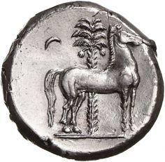 Tetradracma - argento - Lilybaion, Sicilia Siculopunica (350-320 a.C.) - cavallo fermo vs.dx. dietro: palma da datteri con frutti e falce di luna - Münzkabinett Berlin