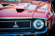 Shelby Images by Jill Reger - Images of Shelby - 1969 Shelby Cobra Gt500 Front End