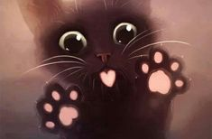 ImageFind images and videos about cute, cat and kawaii on We Heart It - the app to get lost in what you love. Cute Kittens, Cats And Kittens, Cats Bus, I Love Cats, Crazy Cats, Cute Baby Animals, Animals And Pets, Chat Kawaii, Kawaii Cat