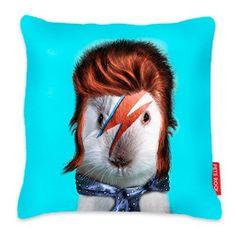 We Love Cushions Aqua 'Glam Rock' guinea pig print cushion Funky Cushions, Printed Cushions, Contemporary Cushions, Pet Home, Glam Rock, Famous Faces, Johnny Depp, Guinea Pigs, Funny Cute
