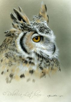 Artist Rebecca Latham < another favorite wildlife artist. The whole family is talented. by lena