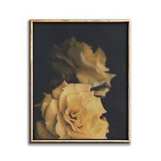 Yellow Rose Wall Art Dark Botanical Downloadable Print – Chaos & Wonder Design Botanical Wall Art, Botanical Prints, Flower Wall, Flower Prints, Coastal Wall Decor, Rose Wall, Art File, Yellow Roses, Nursery Art