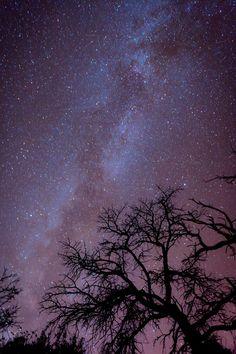 Como uma noite fria de outono... (The Night Sky)