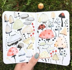 "4,217 Likes, 26 Comments - Sara Boccaccini Meadows (@boccaccinimeadows) on Instagram: ""Quick sketches in the woods. #magic 🍄🍄🍄 a reminder of the Woodland Treasures collection I did for…"""