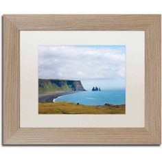 Trademark Fine Art 'Reynisfjara Beach' Canvas Art by Philippe Sainte-Laudy, White Matte, Birch Frame, Size: 16 x 20, Multicolor
