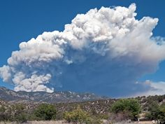 New Mexico Wildfire Becomes Largest In State's History