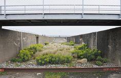 Gilles Clément et son jardin du tiers-paysage <> Saint-Nazaire
