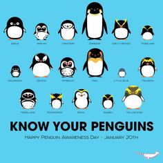 Repost: #Informative Know Your Penguins