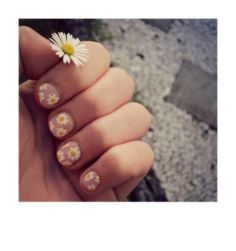 Light Pink Daisy Nail Design