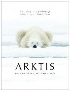 Boklysten: Arktis: liv i en värld av is och snö av Felix Hein...