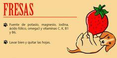 Dog Hacks, Diy Stuffed Animals, Pet Shop, I Love Dogs, Pet Care, Dog Food Recipes, Dog Cat, Terrier, Cute Animals