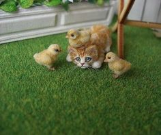 Miniature GingerTabby Kitten with Chicks OOAK by OREON Doll's House cat 1:12