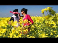 Song - Motor Artist - Gagan Bedi Music - Tonn-e Video - Doctor D