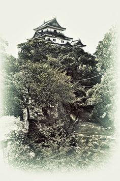 Wakayama Castle, Japan 和歌山城
