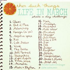 Didn't do so well in February, I'll try again in March.March Photo a Day {note that Chaos is No.1}