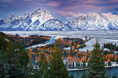 Wyoming, Grand Teton National Park, Fall Colors