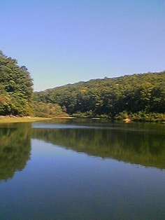 Trout Pond, Wardensville, WV