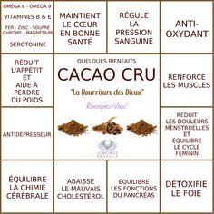 CACAO CRU | Le Monde s'éveille