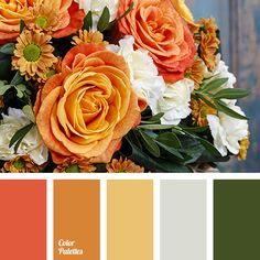 Color Palette combination of summer, color of basil leaves, color of orange, dark green, Interior Design Color Schemes, Colour Schemes, Color Combos, Design Seeds, Color Concept, Decoration Palette, Orange Color Palettes, Orange Palette, Color Palate