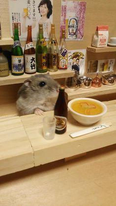 Hamster's Mini Bar