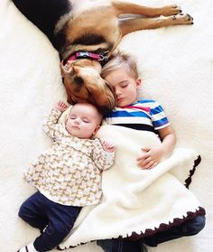 Body Pillow: Theo and Beau: Viral Napping Duo Is Now a Trio - mom.me