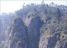 Green Valley view @ Kodaikanal
