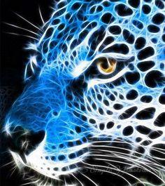 Blue Fractal Leopard.