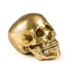 Wunderkammer Human Skull - Culture Skulture - Diesel - Seletti - Do Shop