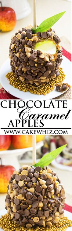 Learn how to make easy CHOCOLATE CARAMEL APPLES. Lots of tips included! You can slice and enjoy as chocolate caramel apple slices too. Great homemade gift for Christmas, Fall and Thanksgiving parties. From http://cakewhiz.com