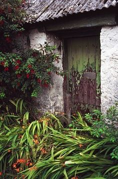 old cottage door