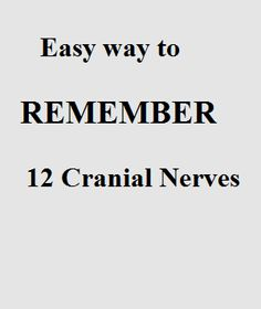 Cranial Nerves Mnemonic – Easy Way To Remember 12 Cranial Nerves - Nursing Feed Nursing School Tips, Nursing Tips, Nursing Notes, Dental Hygiene School, Dental Hygienist, Medical School, Medical Students, Nursing Students, Nursing Mnemonics