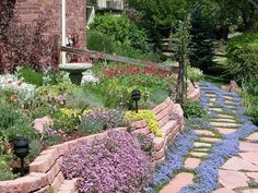 Beautiful blue blooms soften the hardscape in this functional landscape... - Xeriscaping is a type of landscaping around homes and businesses that uses a limited amount of water.