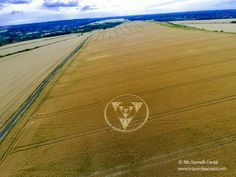 Crop Circle at Monument Hill, Near Etchilhampton, Wiltshire. Reported: July 27, 2014.