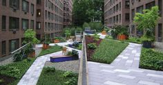 Town and Gardens: Pushing the envelope of creative landscape design in New York City
