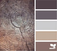 Michelle - Blog #Home #color : A #Gray #Floor Fonte : http://design-seeds.com/index.php/home/entry/color-stumped
