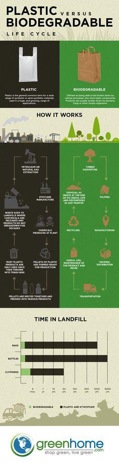 Plastic vs Biodegradable [Infographic]