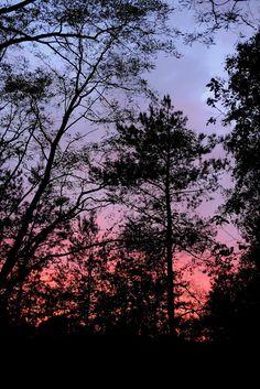 Sonnenuntergang #1