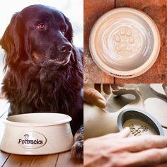 Cat Supplies, Pet Bowls, Cats Of Instagram, Labrador Retriever, Ceramics, Pets, Animals, Labrador Retrievers, Ceramica