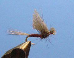 Yarn-Wing-Dun-2-4 sbs