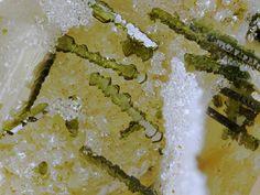 Fotogalerie – Arbeitskreis Mineralien und Fossilien