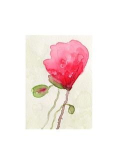 poppies impression print